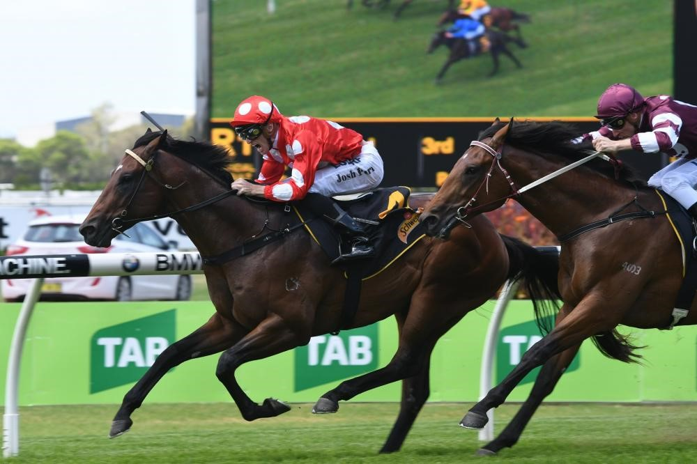 Chauffeur Delivers on Debut
